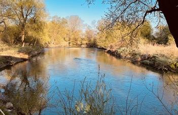 Kanyarulatfejlődés a Rába folyón - Pusztai-Eredics Alexandra